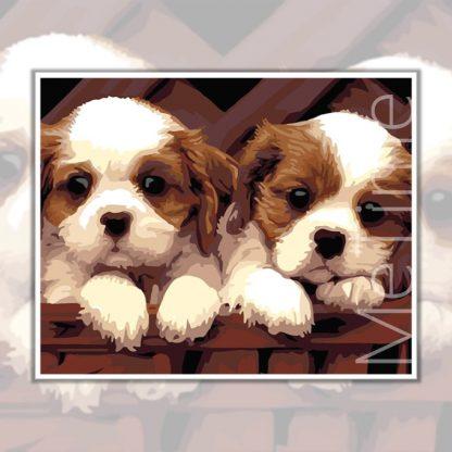 Cute Puppies Dog