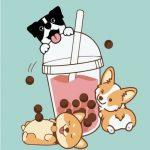 Bubble Tea Dogs