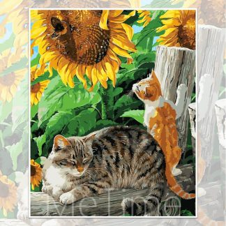 Cats and Sunflower