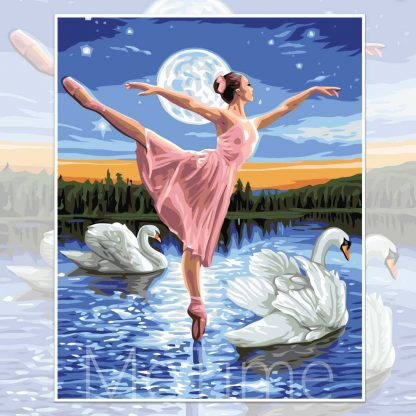 Dance with Swans